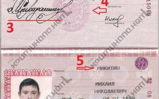 Что такое внутренний паспорт? чем он отличается от паспорта гражданина рф?