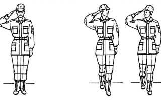 Сколько раз подаётся команда смирно командиру роты?